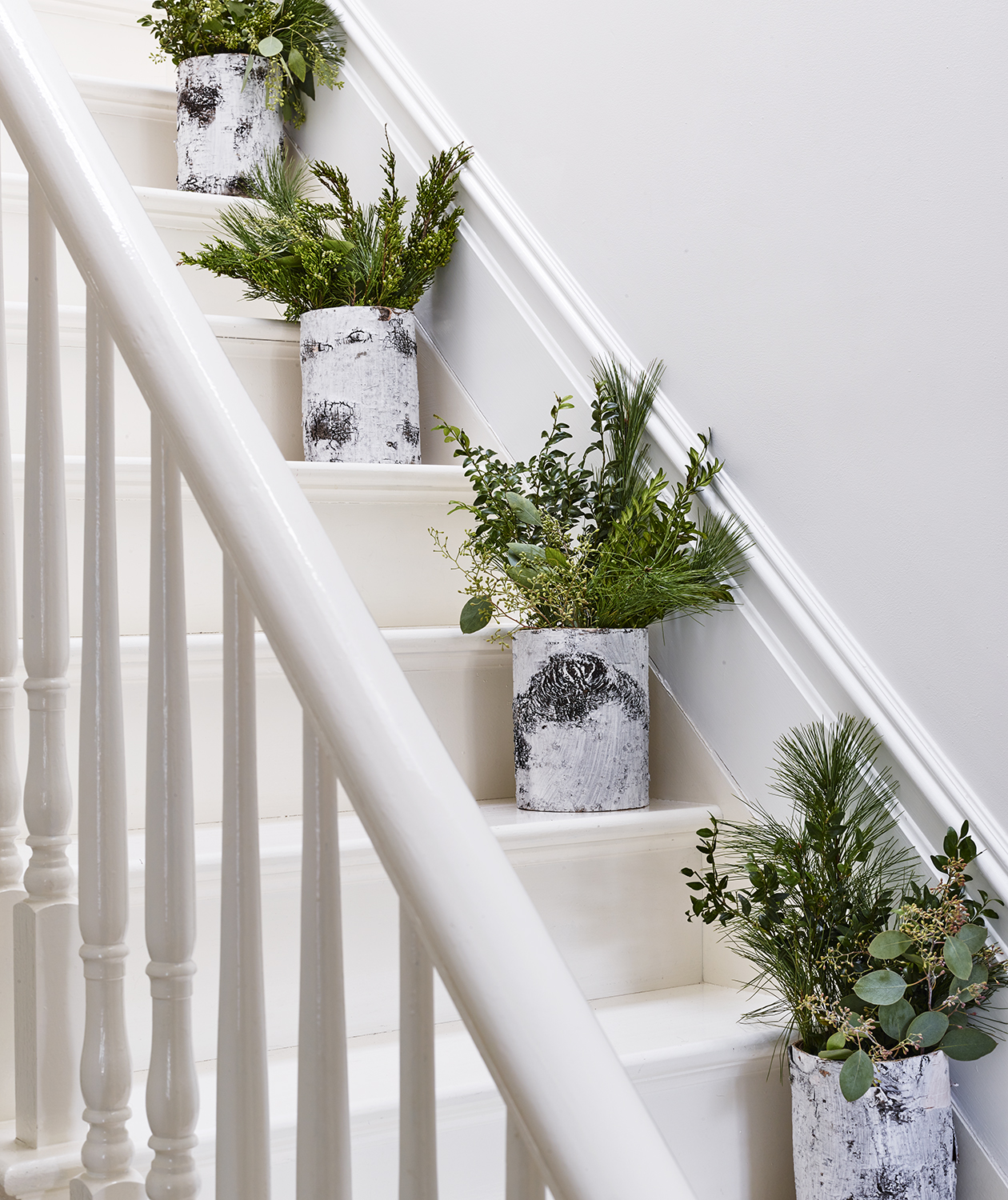 Potted plants on stairs