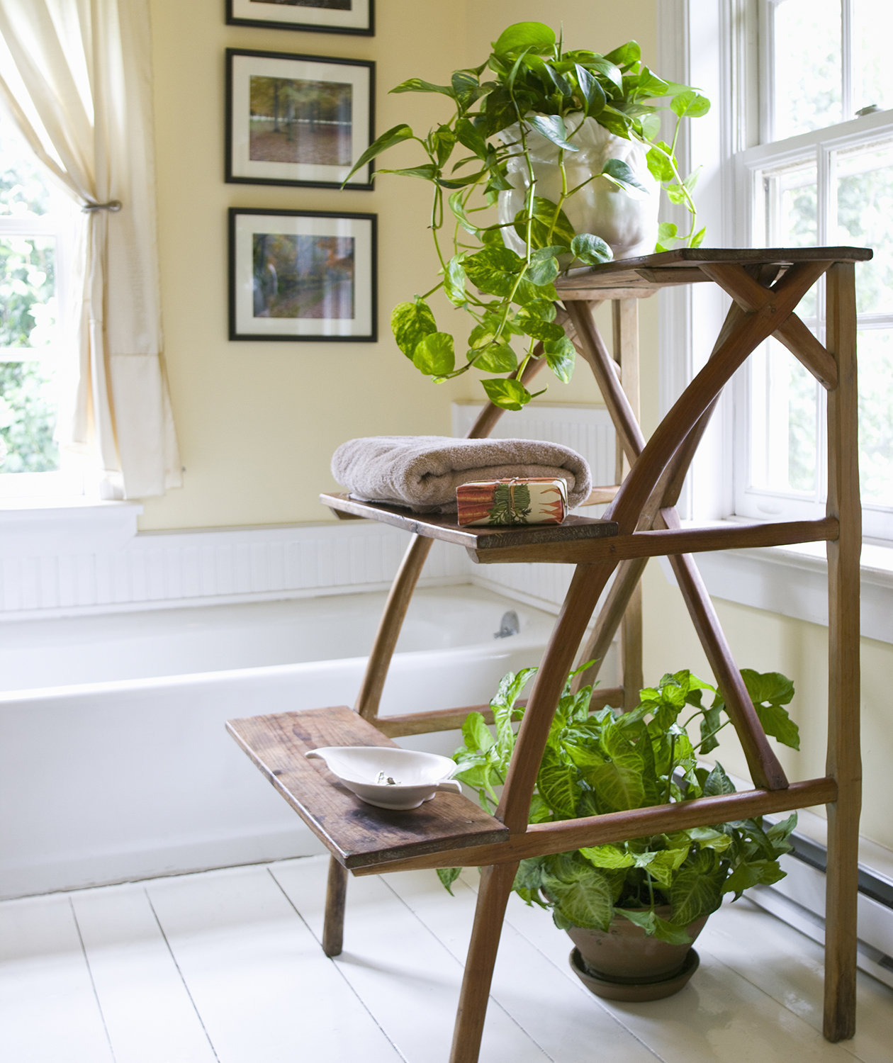 Bathroom with ladder shelves and plants