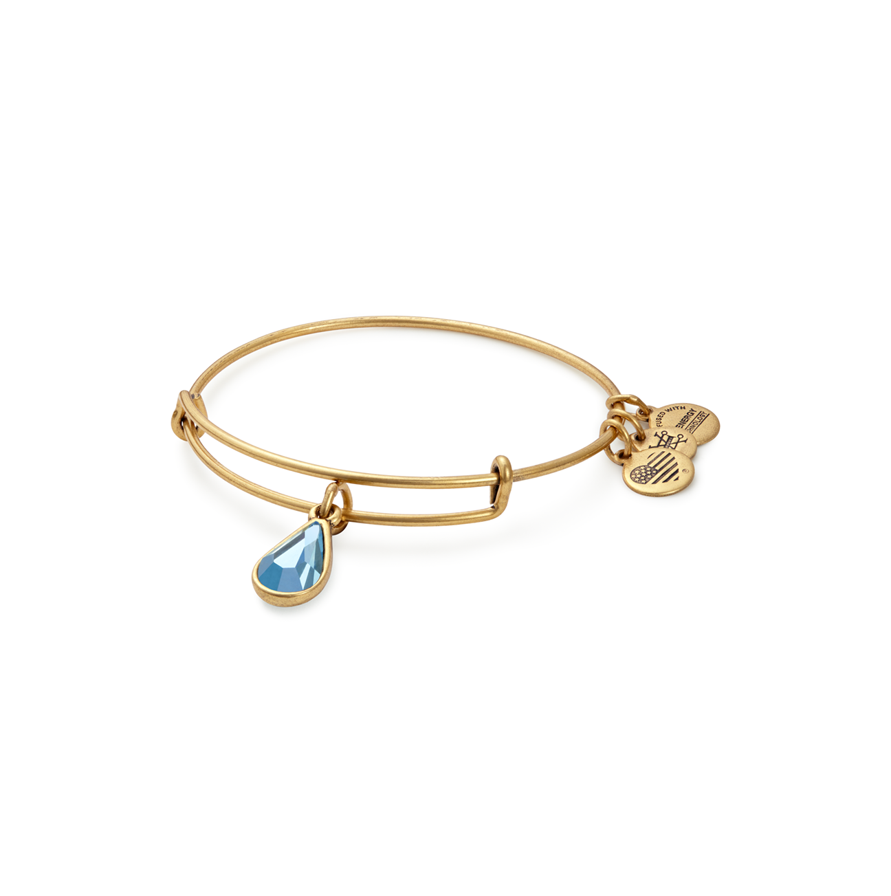 Alex and Ani Birth Month Charm Bangle