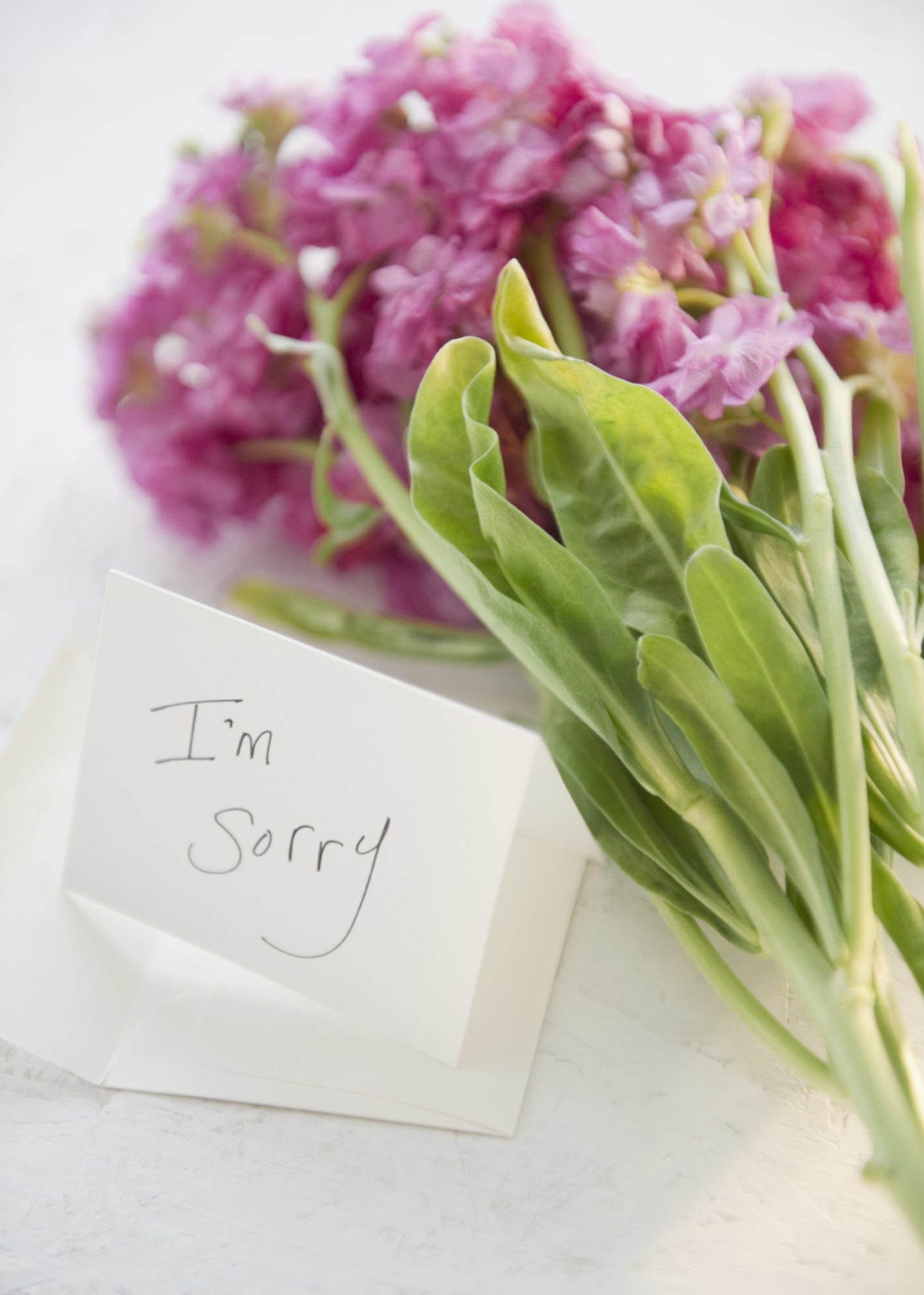 The Anatomy of a Good Apology, According to Science