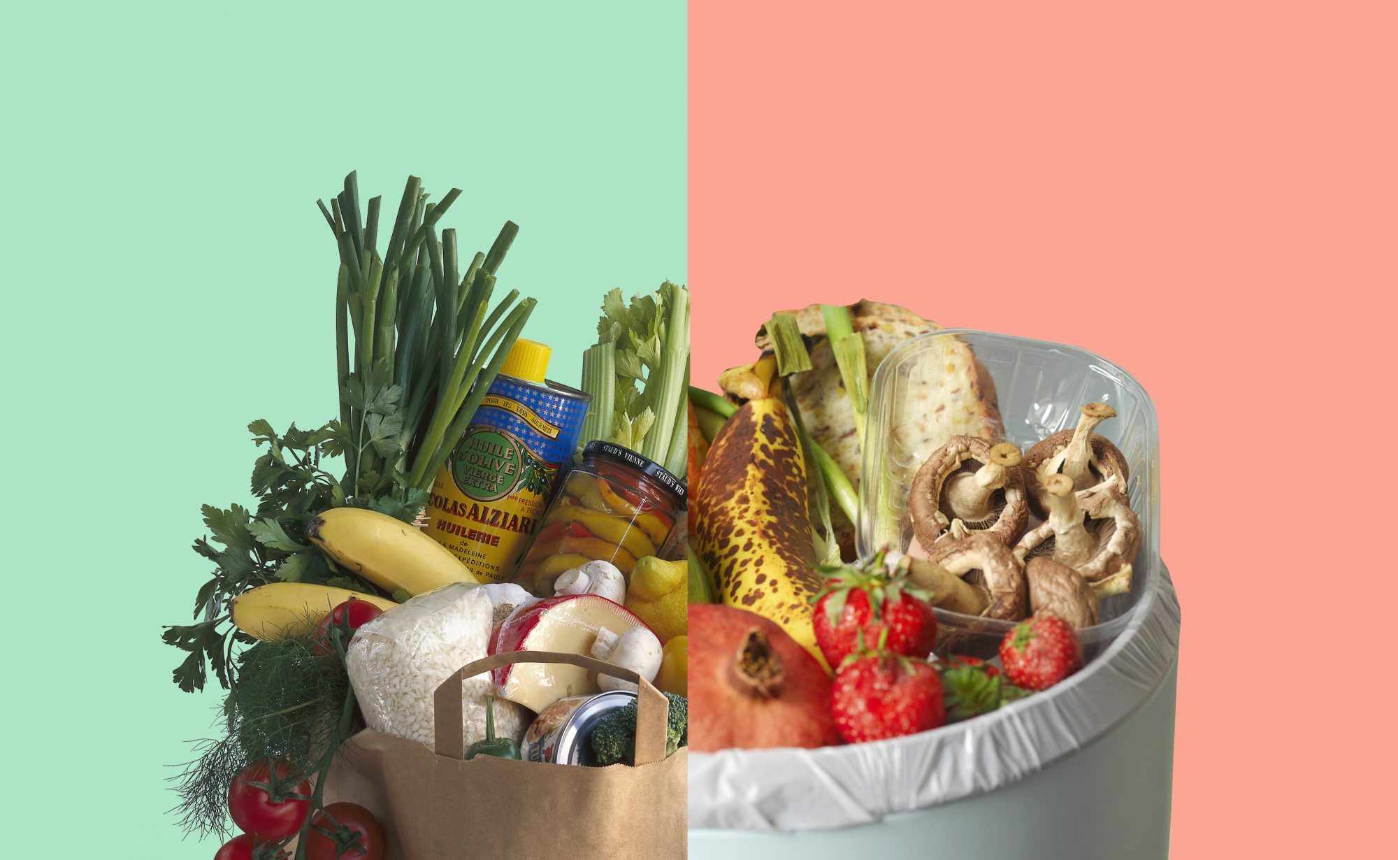 Food Waste in America, fruits and vegetables in shopping bag and trash can