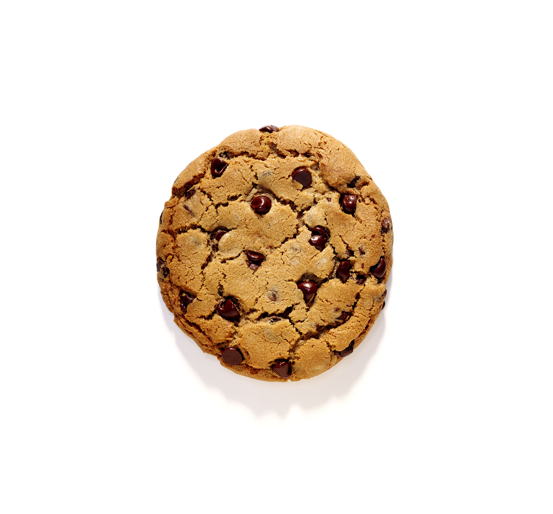 chocolate-chip-cookie-1
