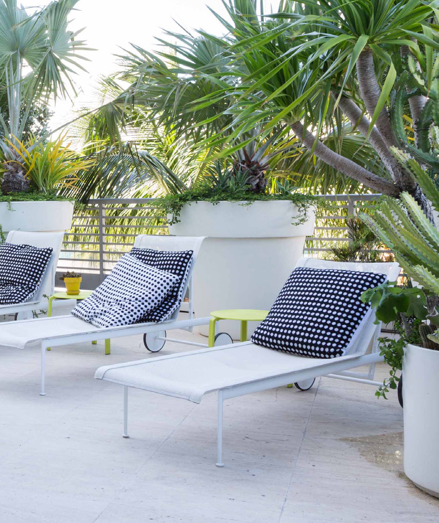 Lounge chairs with decorative pillows