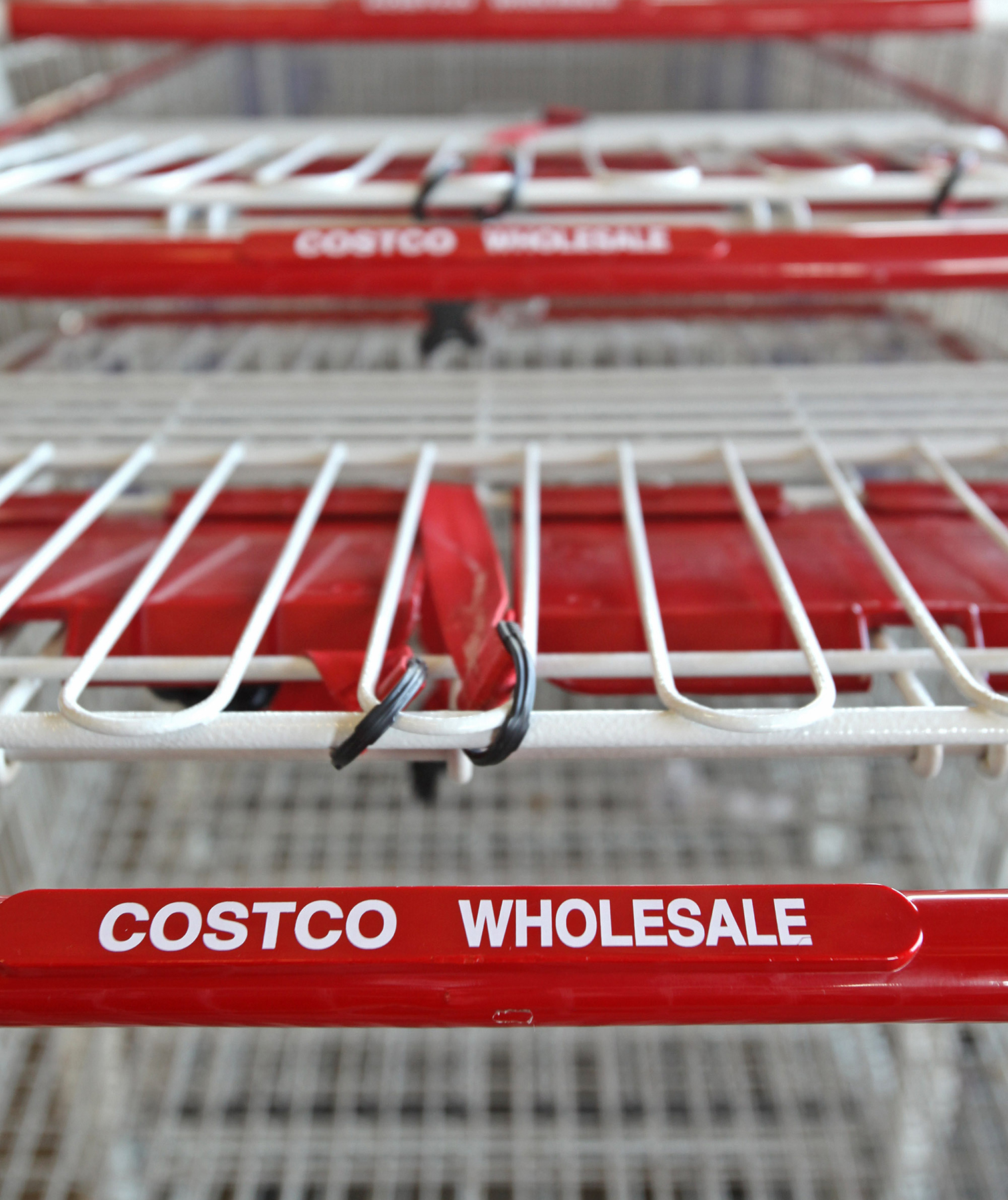 Costco carts