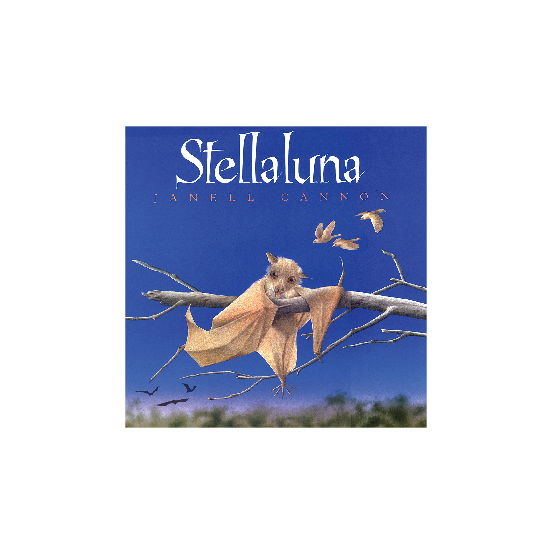 Stellaluna, by Janell Cannon