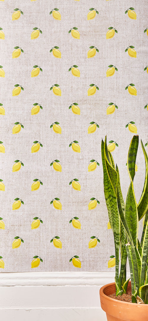 Soludos Chasing Paper Lemon Wallpaper