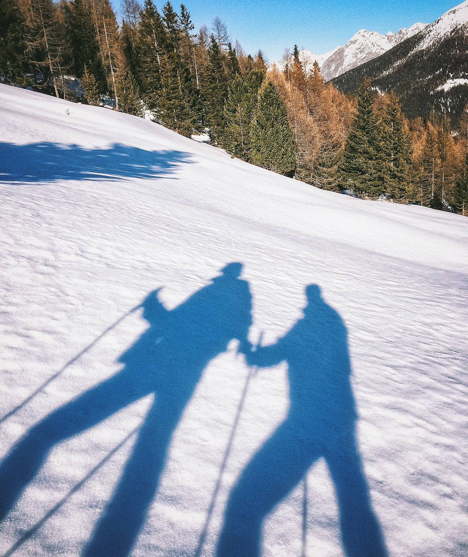 2 skier shadows on the snow