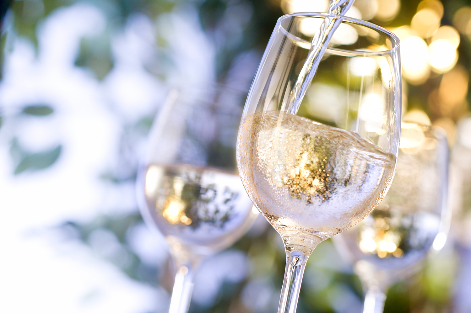Chilled White Wine in Glass