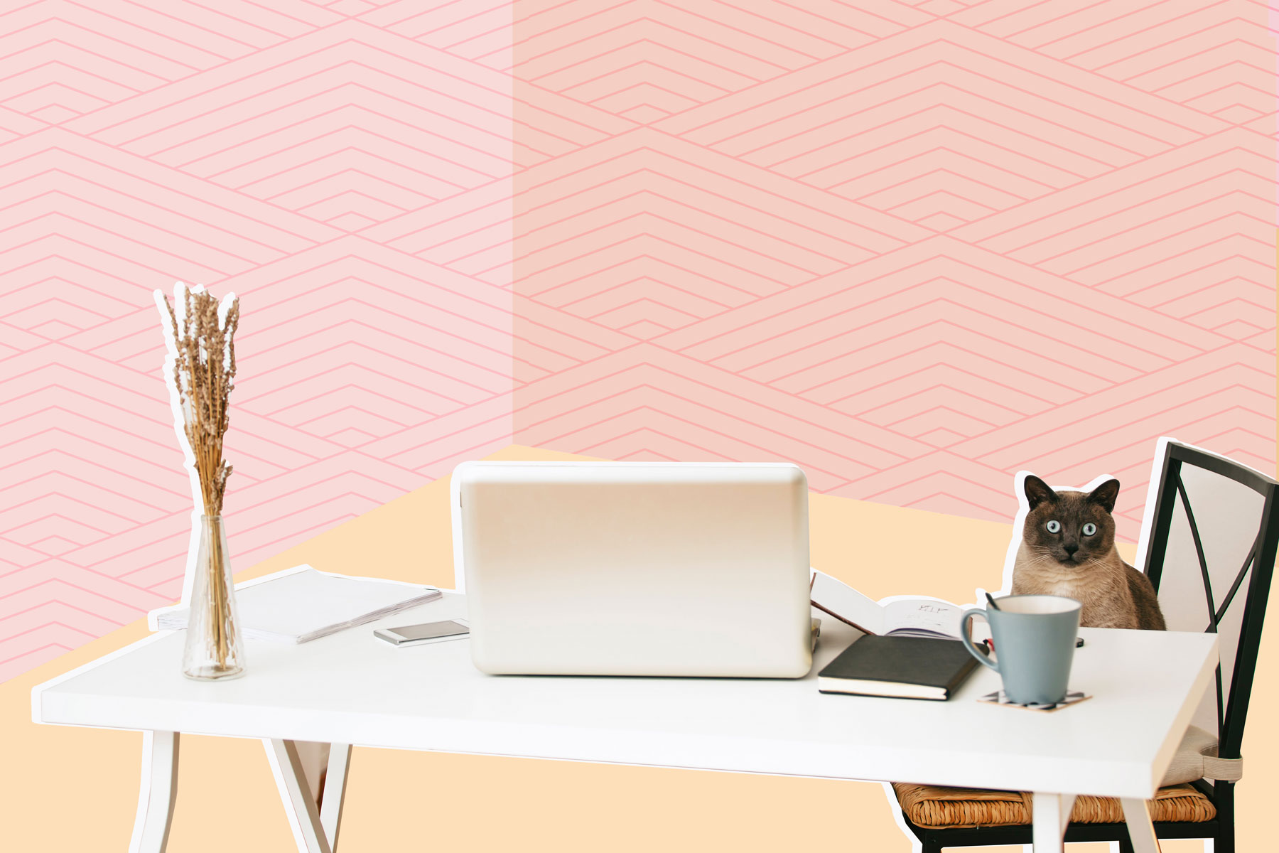 Best Work From Home Jobs 2019, According to FlexJobs - work from home cat