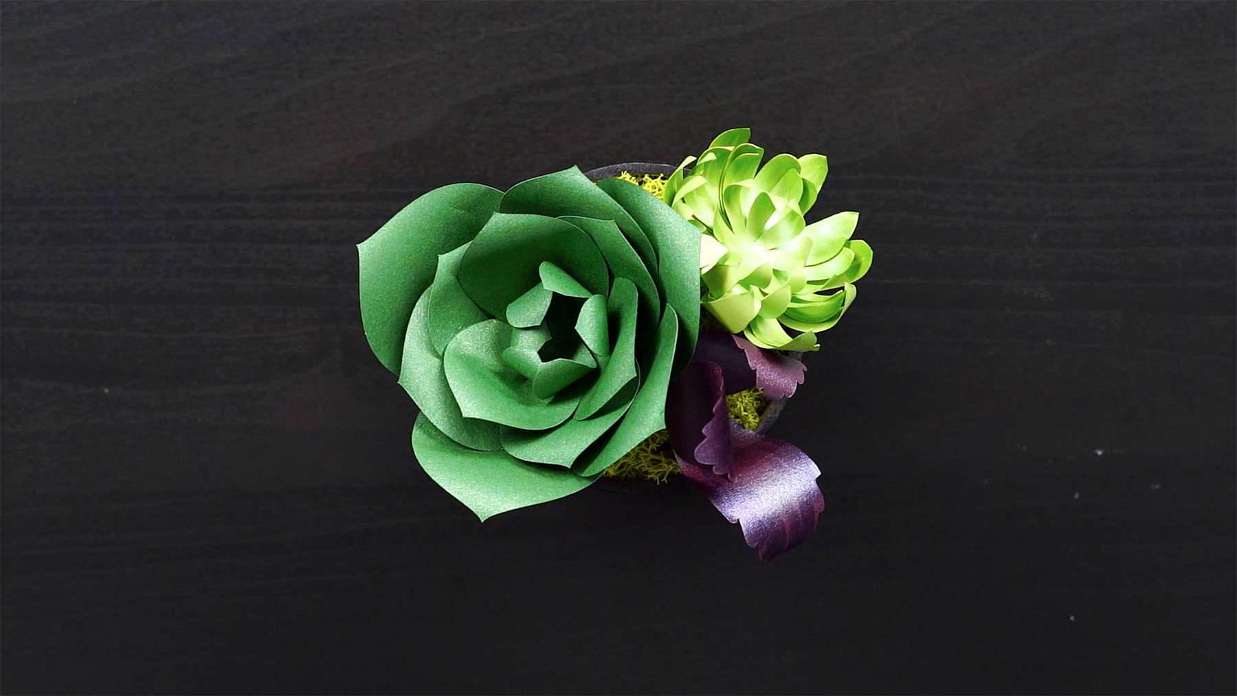 Video These Diy Paper Succulents Are Just As Eye Catching As The