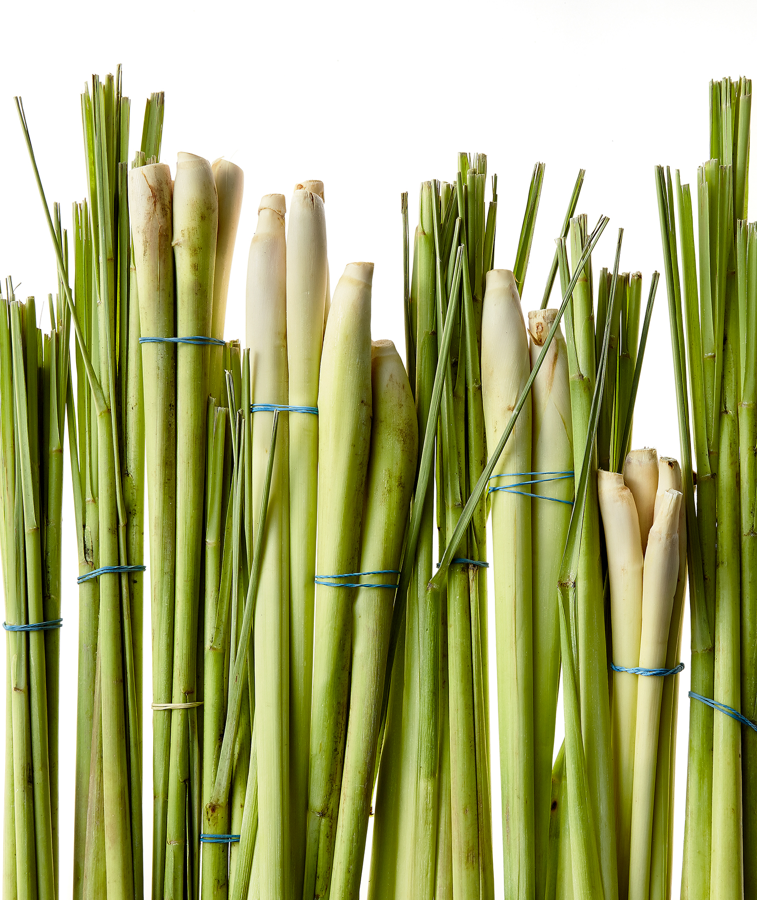 Lemongrass bunches