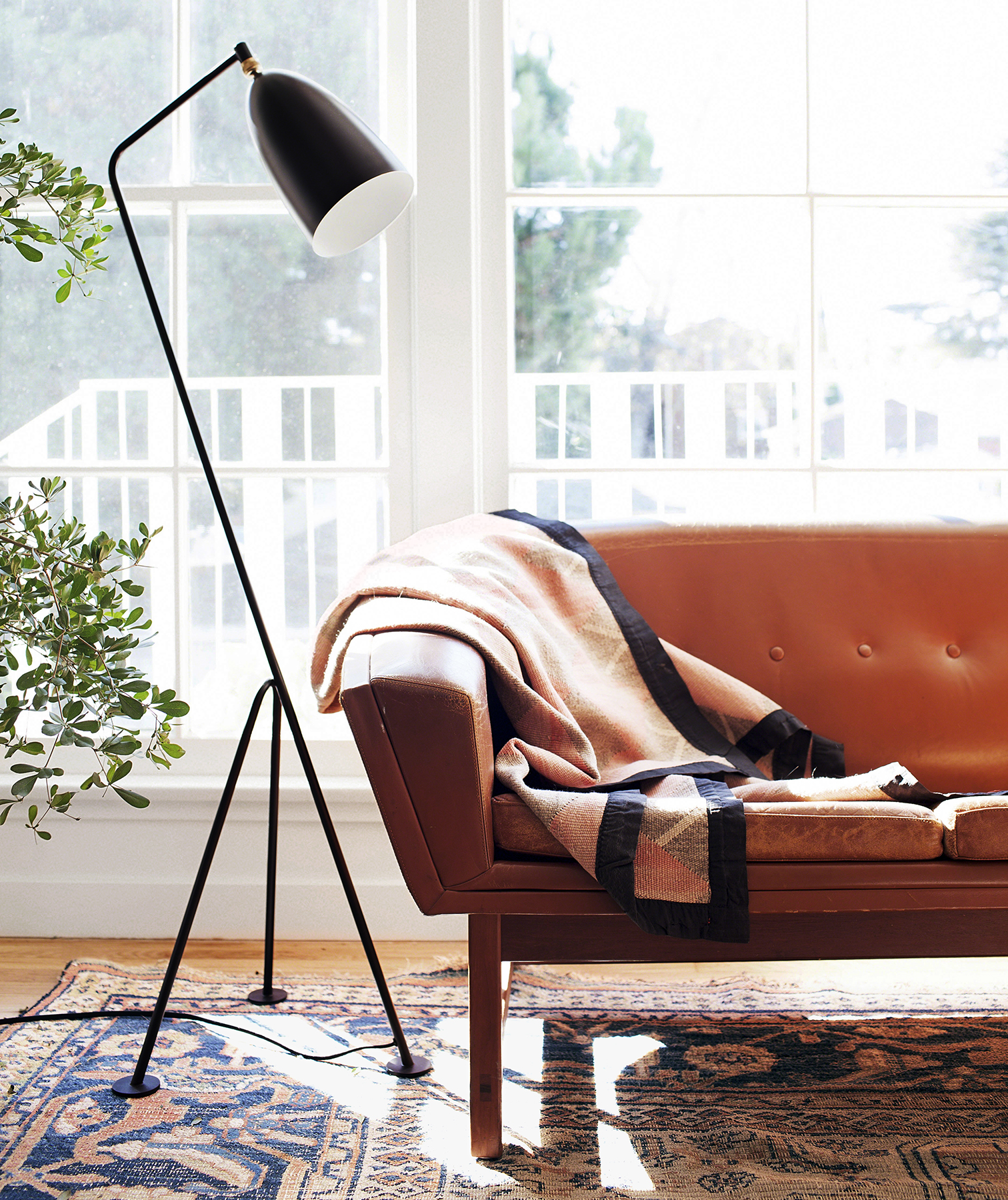 Sofa with throw, rug, floor lamp