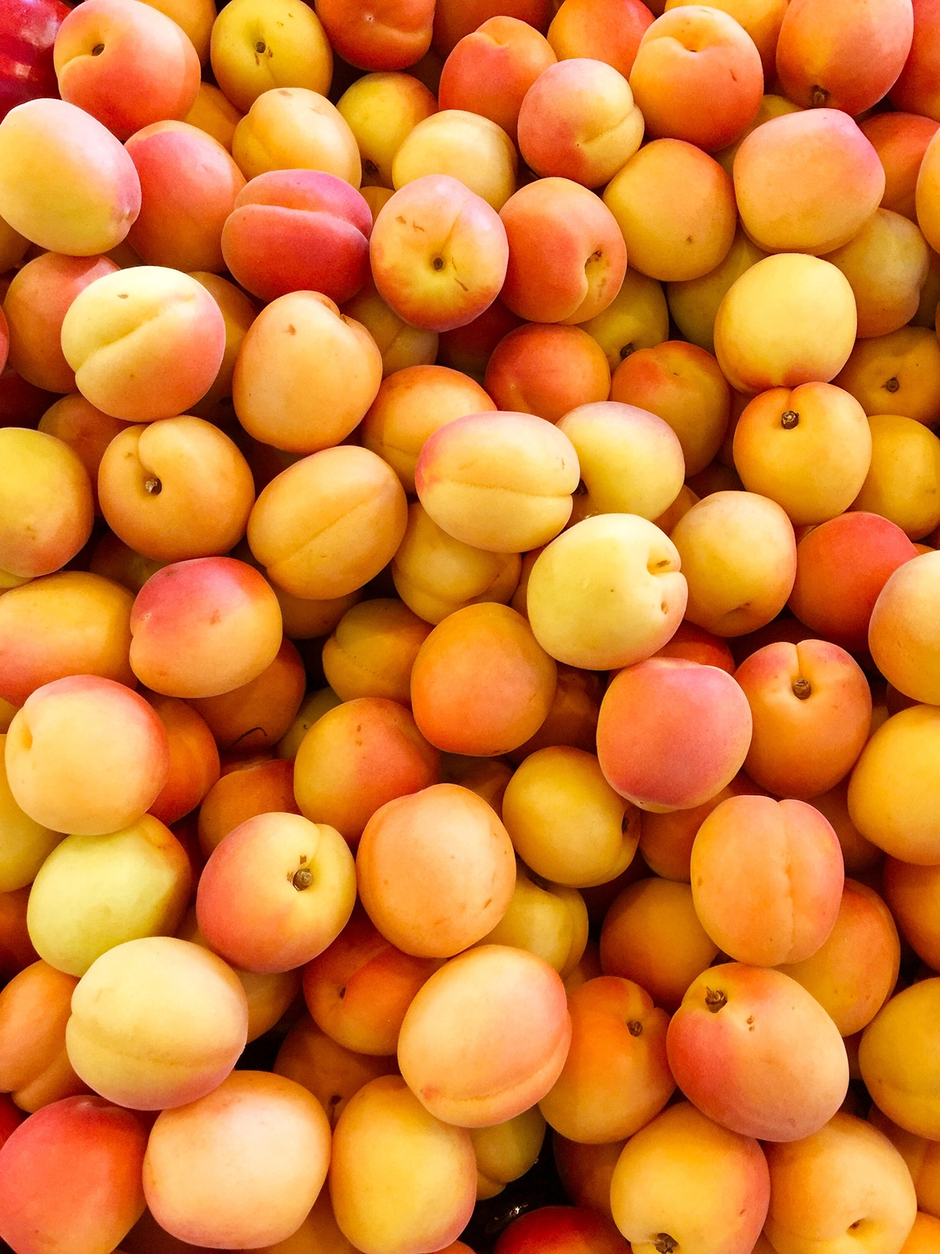 Bunch of Peaches