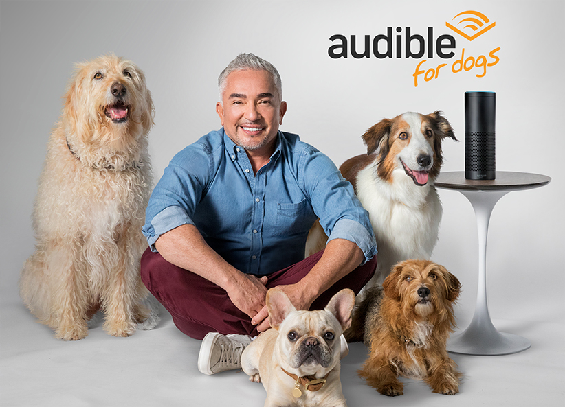 We Tested Cesar Millan's Audiobooks for Dogs | Real Simple