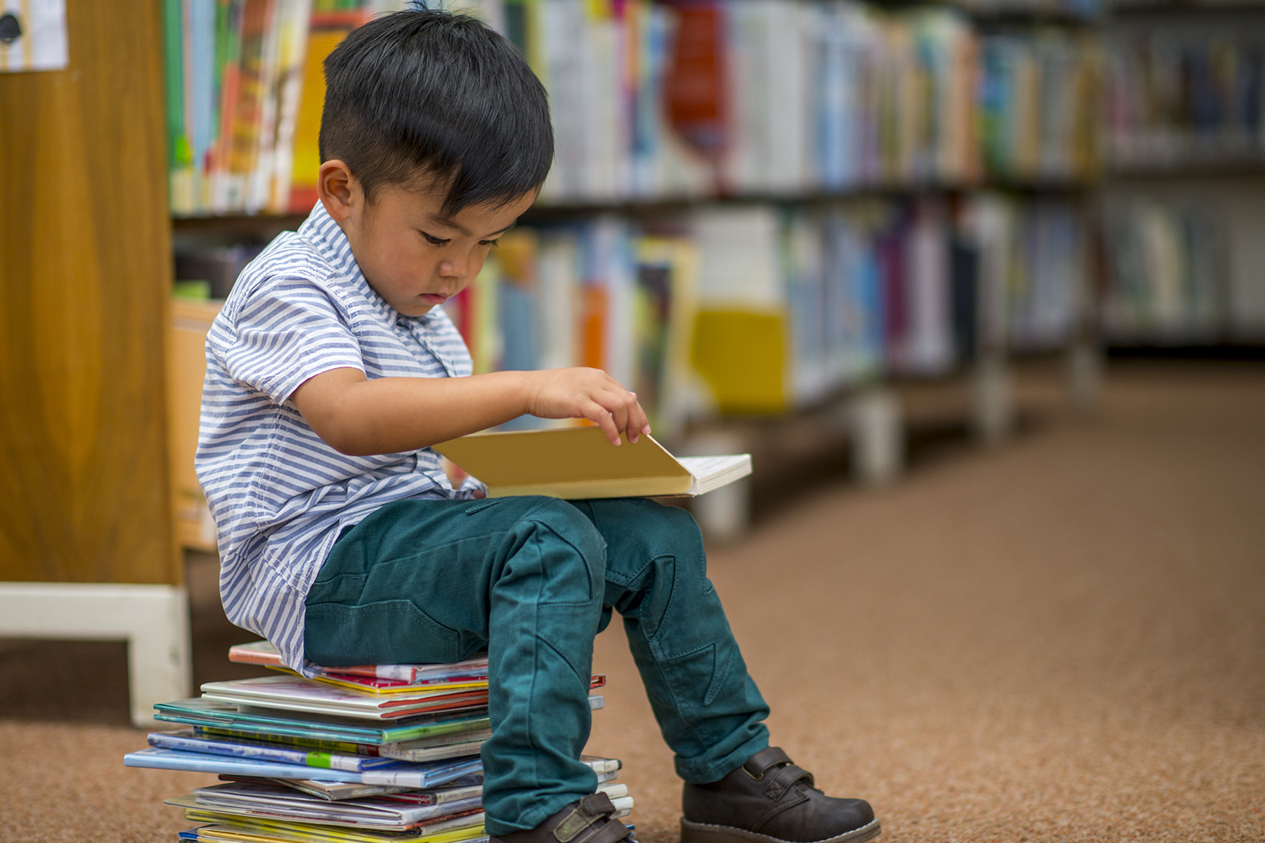 Little boy with books at library