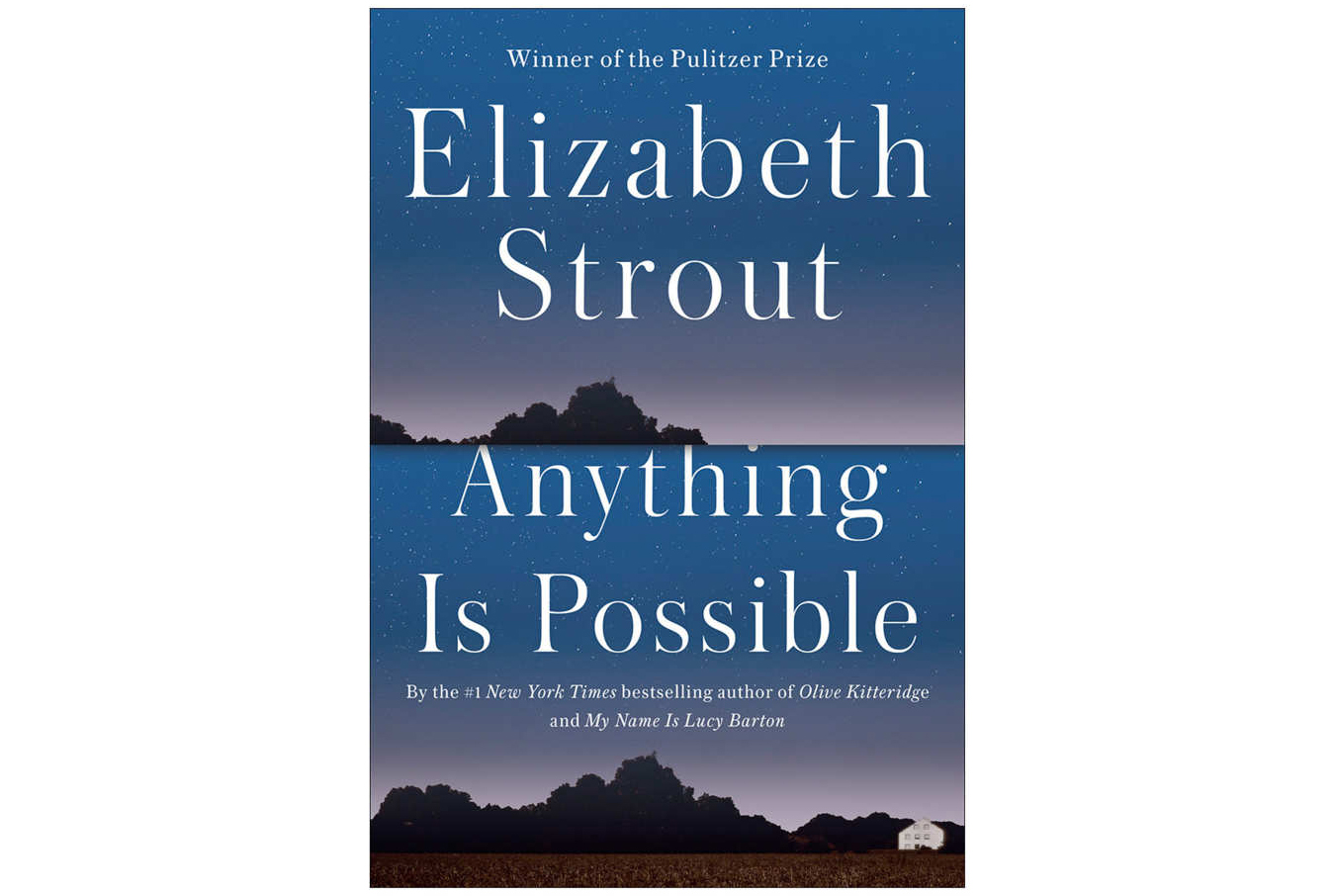 EmAnything Is Possible Em By Elizabeth Strout