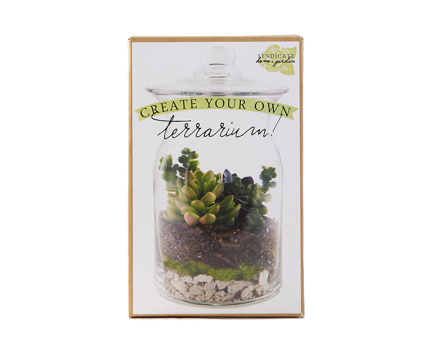 Create Your Own Terrarium Kit
