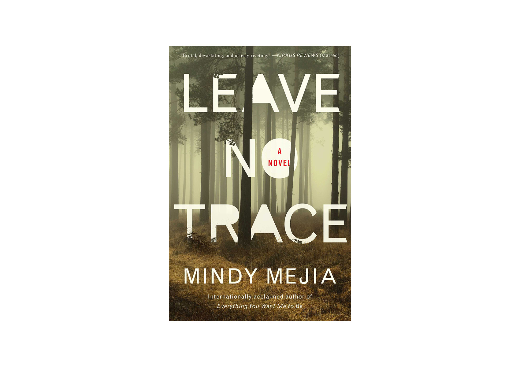 Leave No Trace, by Mindy Mejia