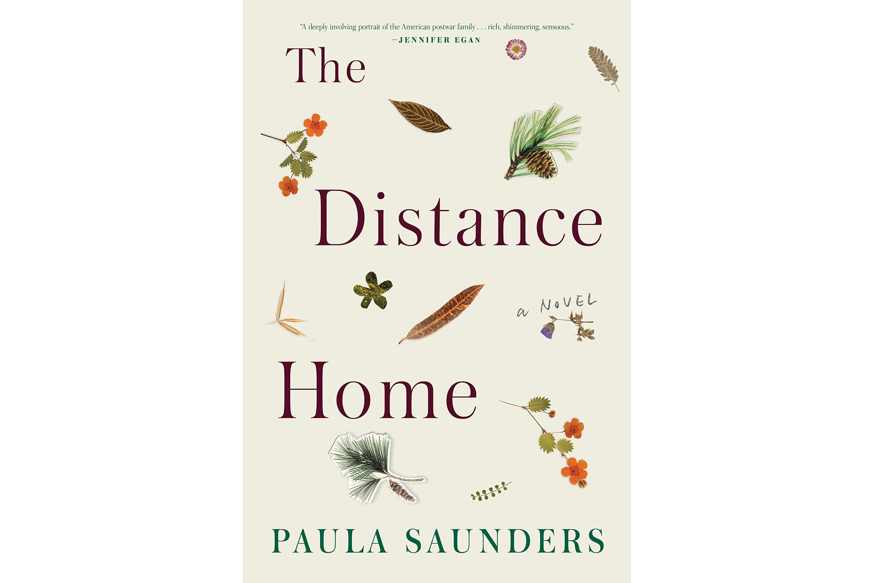 The Distance Home, by Paula Saunders