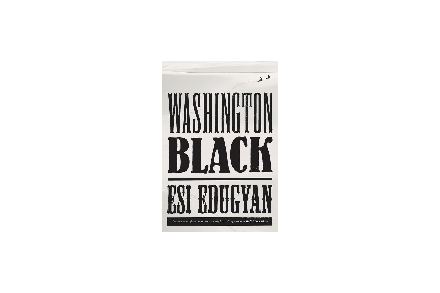 Washington Black, by Esi Edugyan