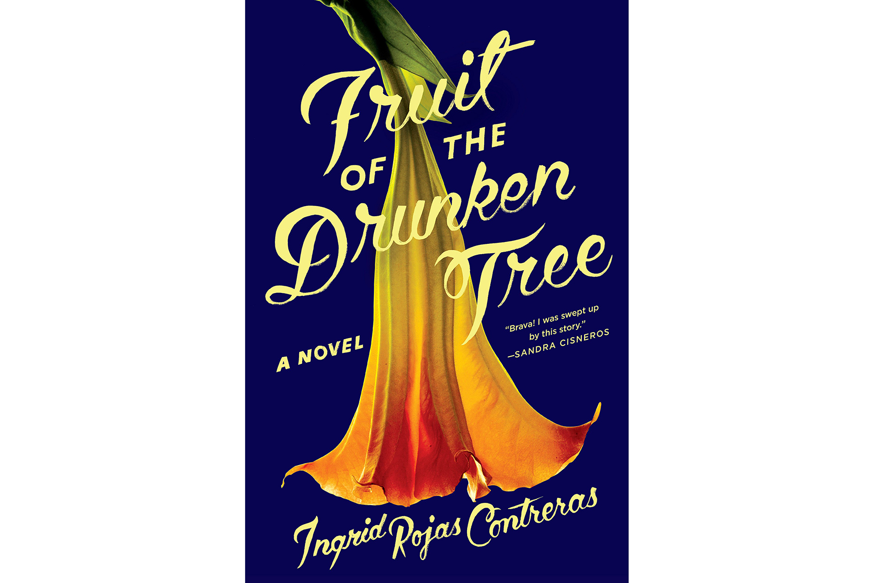 Cover of Fruit of the Drunken Tree, by Ingrid Rojas Contreras