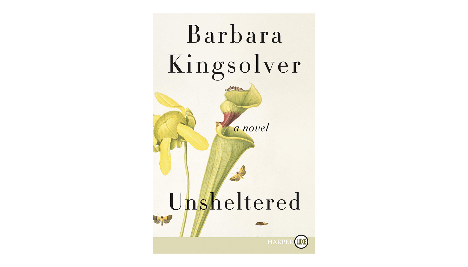 Unsheltered, by Barbara Kingsolver