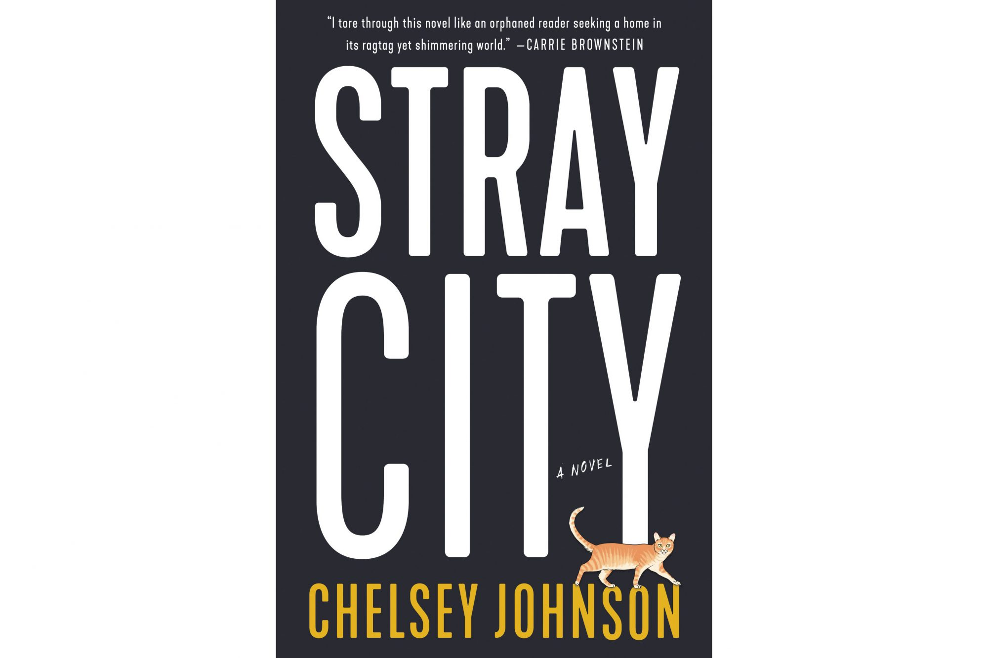 Stray City, by Chelsey Johnson