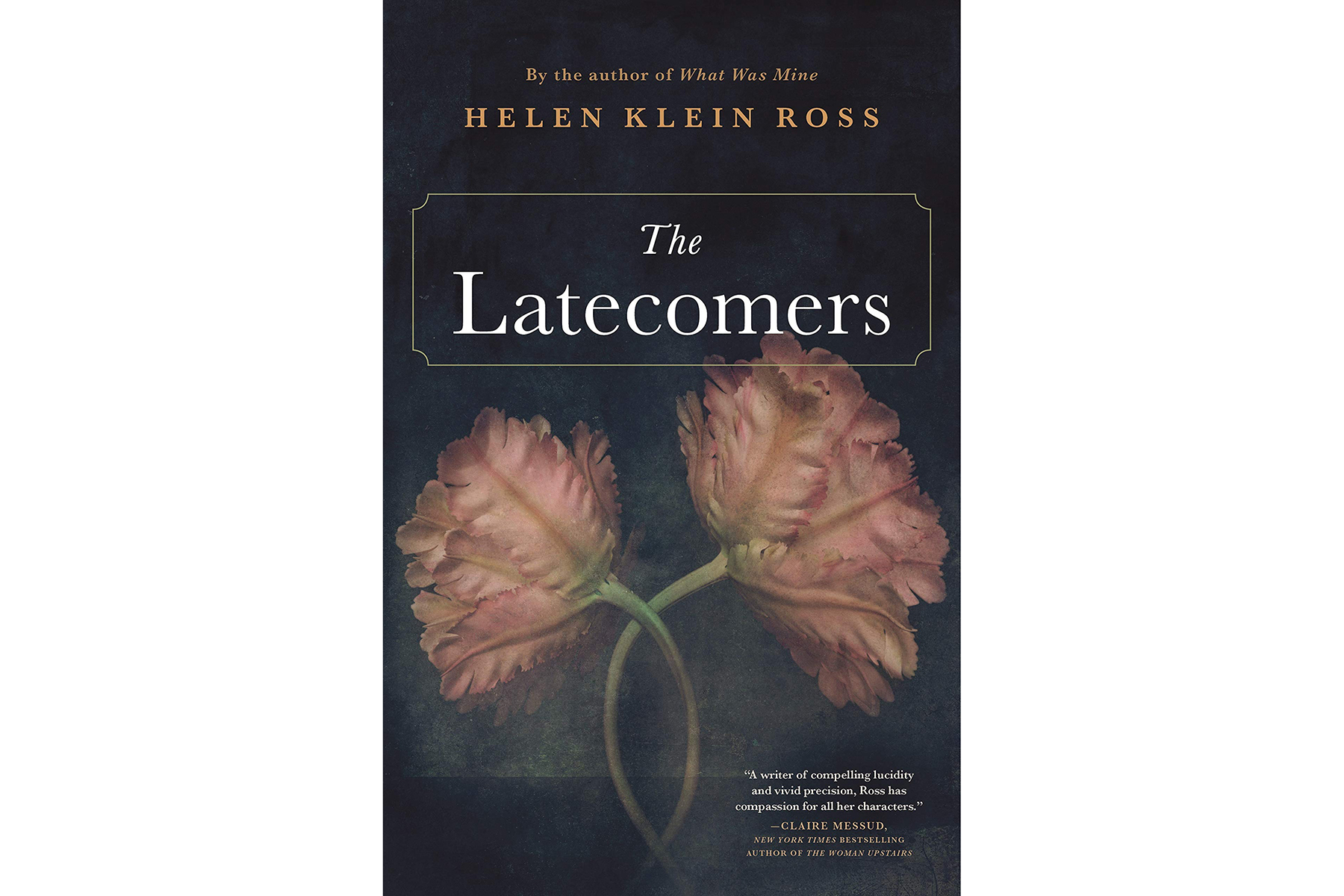 cover of The Latecomers, by Helen Klein Ross
