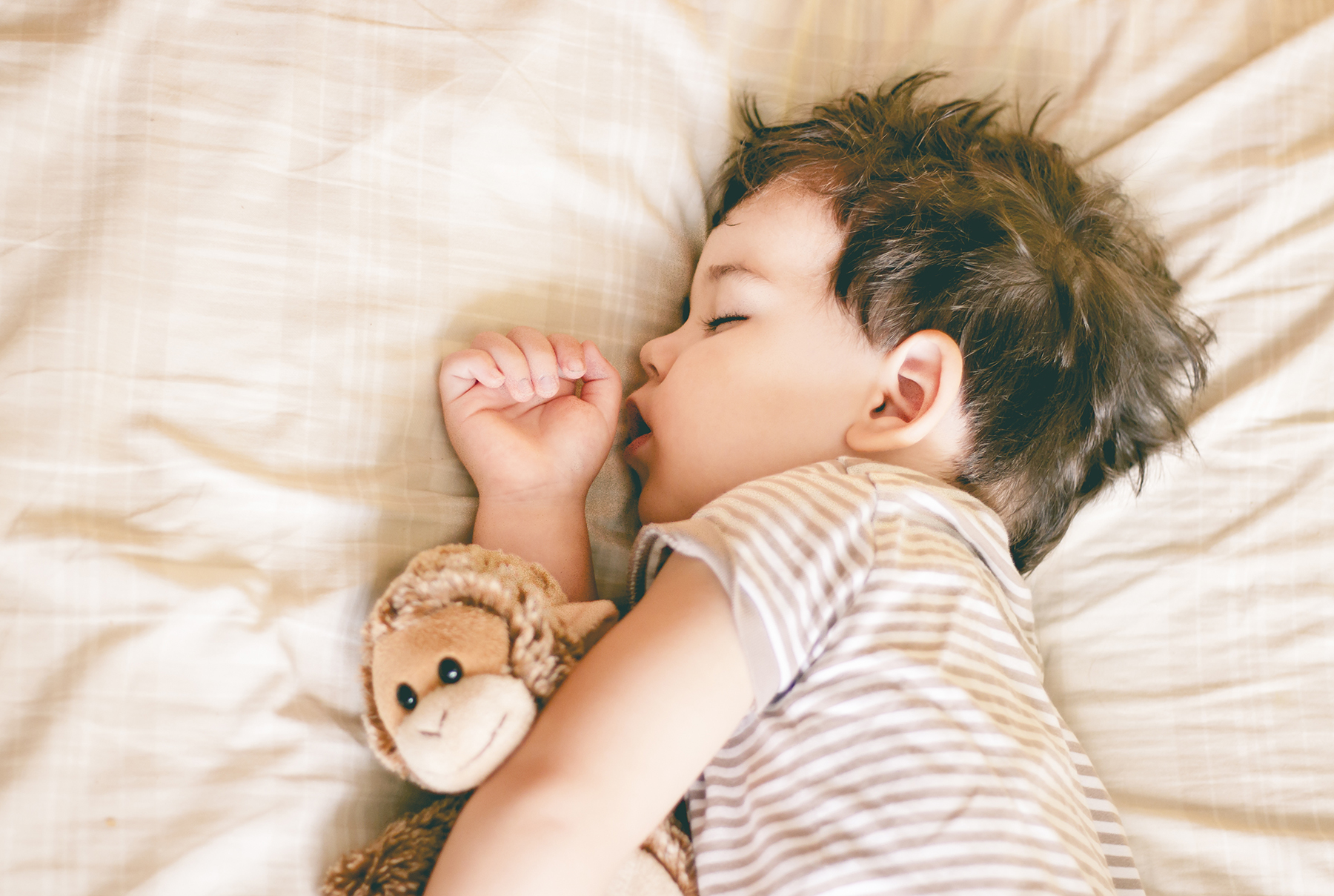 Toddler sleeping with stuffed monkey