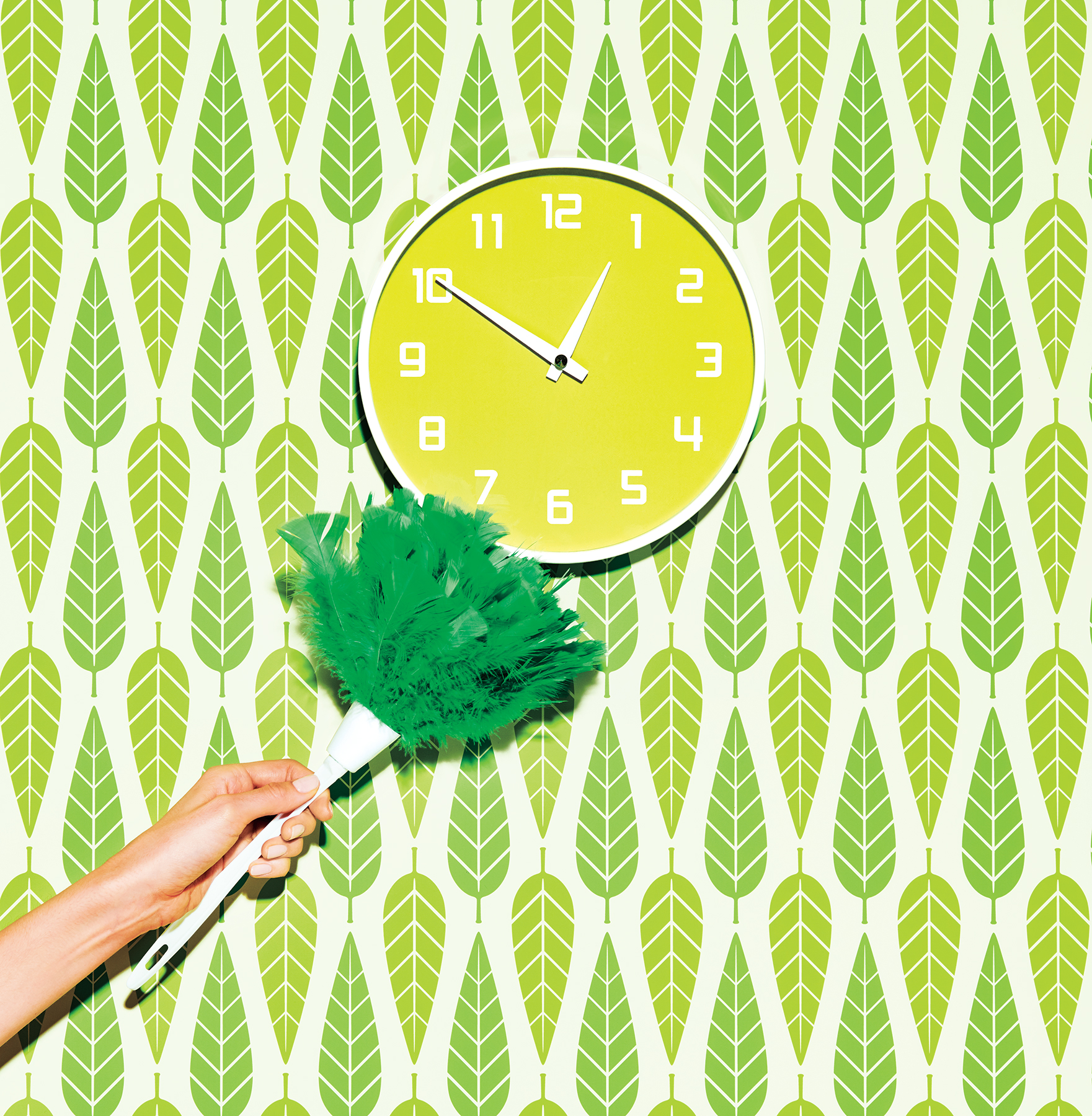 Green Feather Duster and Clock