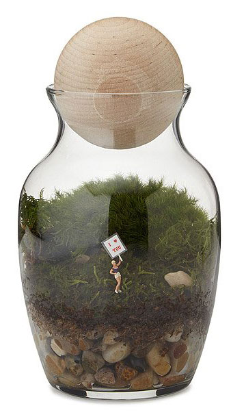 fathers-day-gifts-terrarium