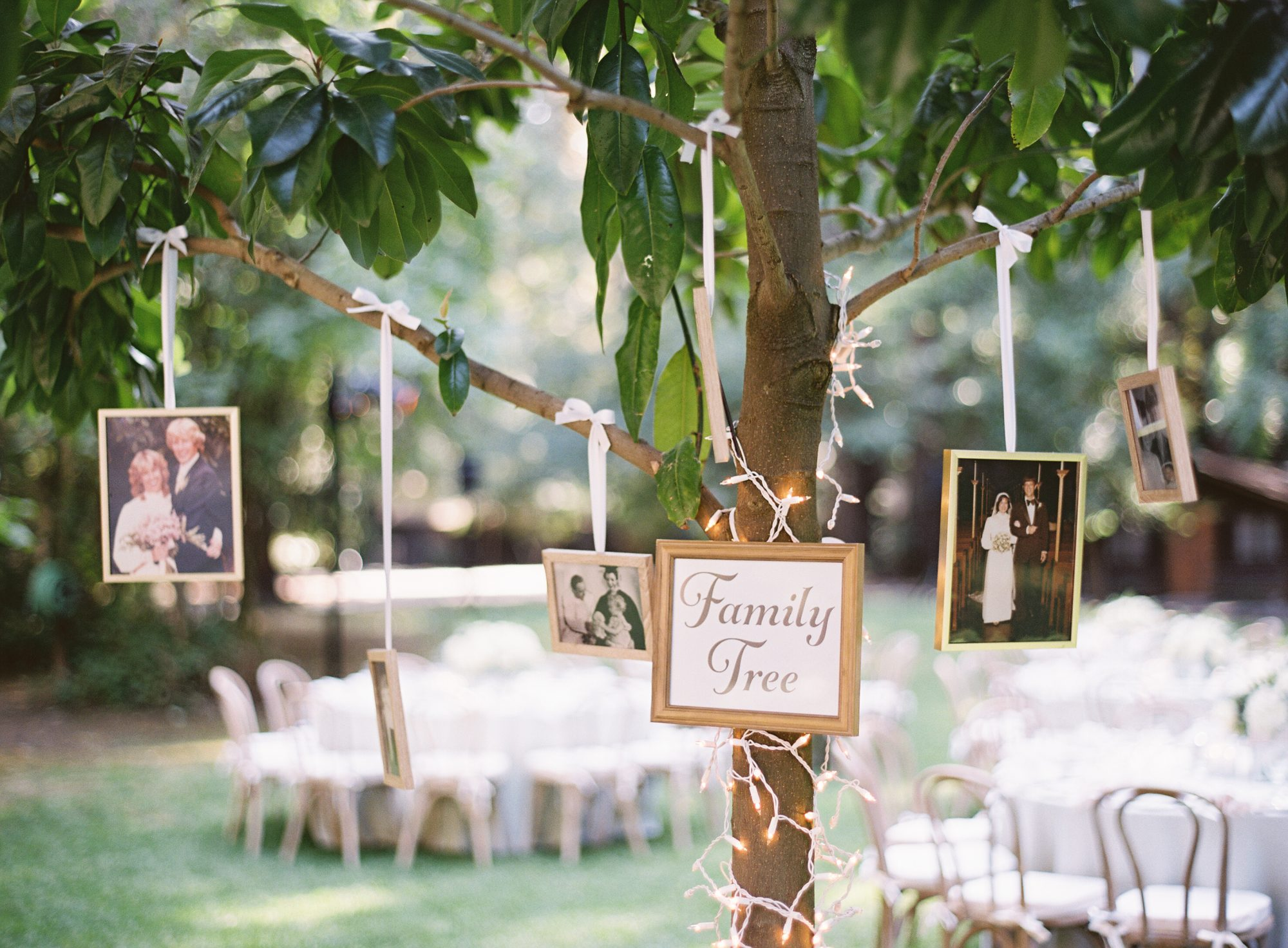 Create a Literal Family Tree