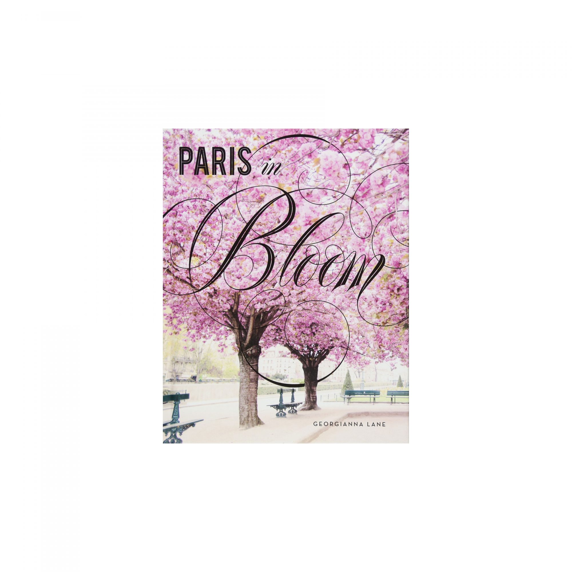 Paris in Bloom, by Georgianna Lane