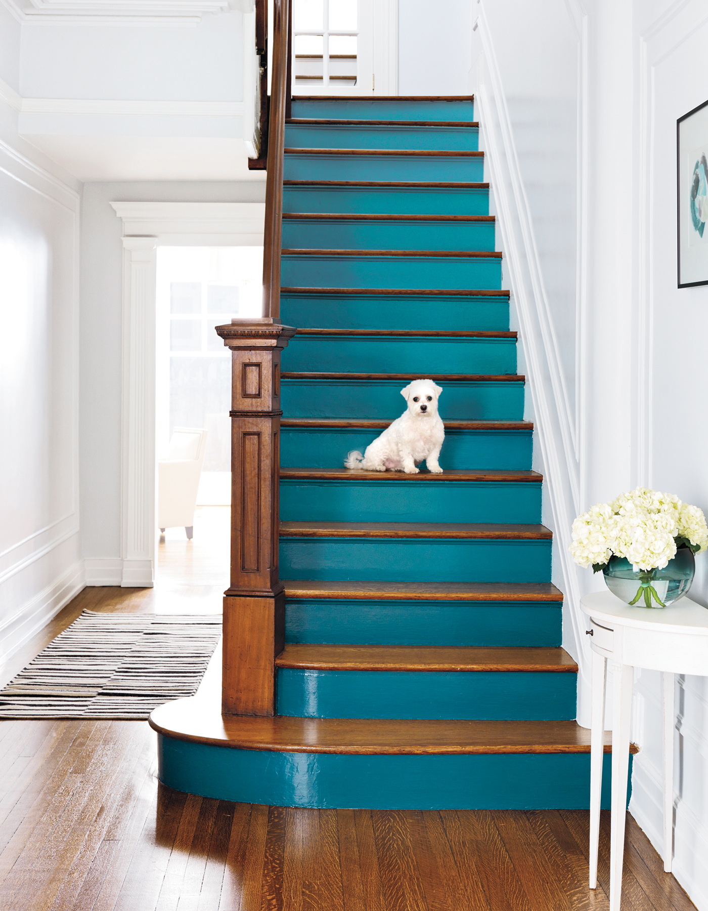 5 Surprising and Easy Painting Ideas to Add Color to Your Home