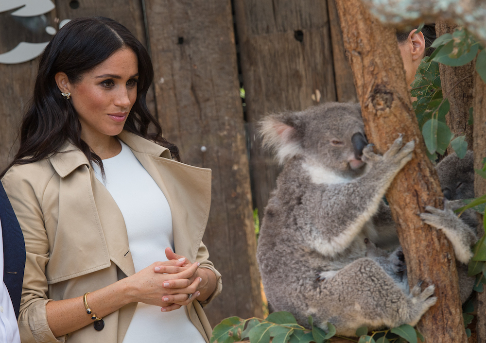 Meghan Markle Wears Princess Diana's Butterfly Earrings in Sydney, One Day After Announcing Pregnancy with Prince Harry