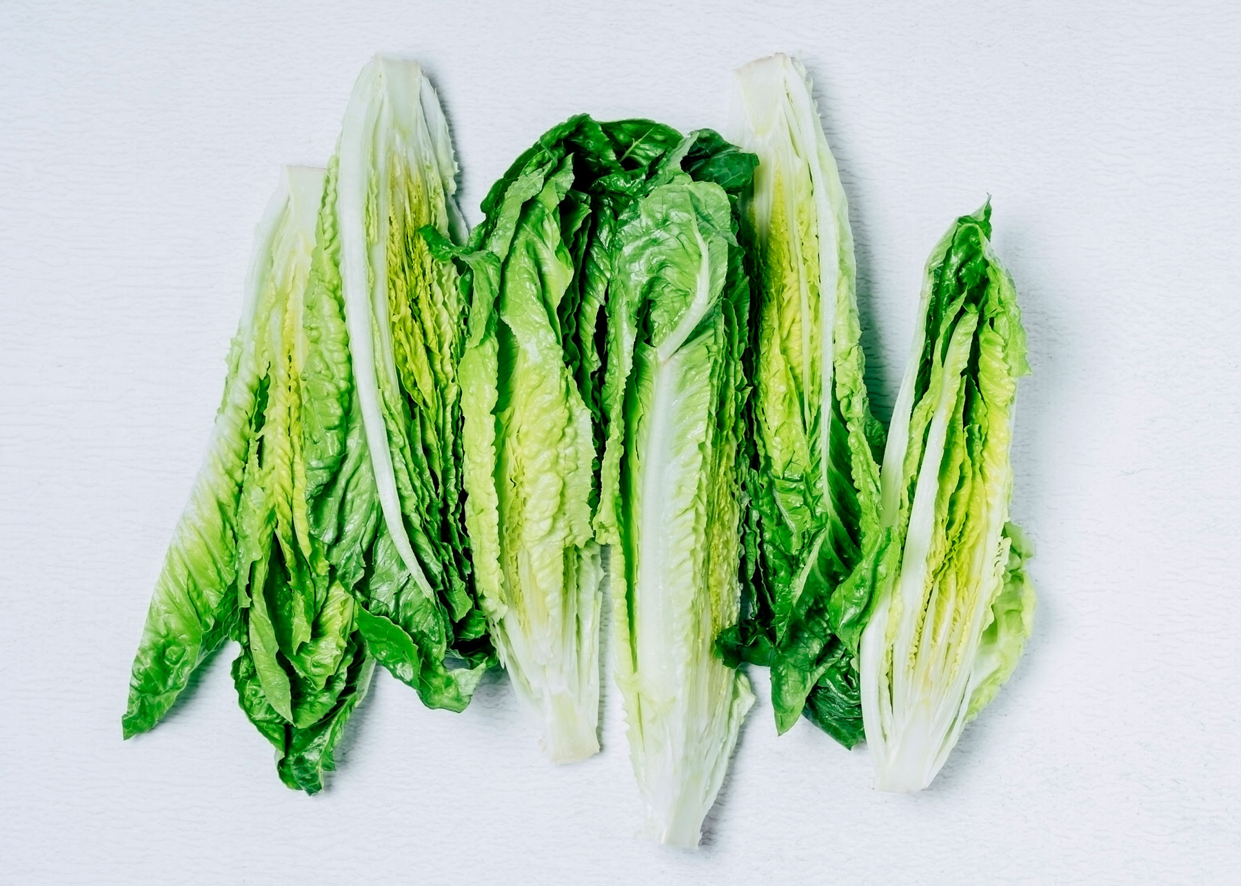 Romaine Lettuce E. Coli Outbreak Pre Thanksgiving