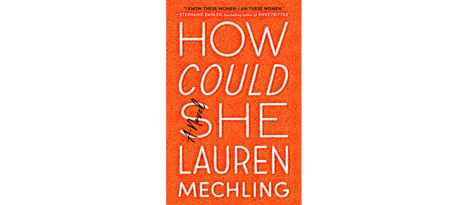 Book cover of How Could She, by Lauren Mechling