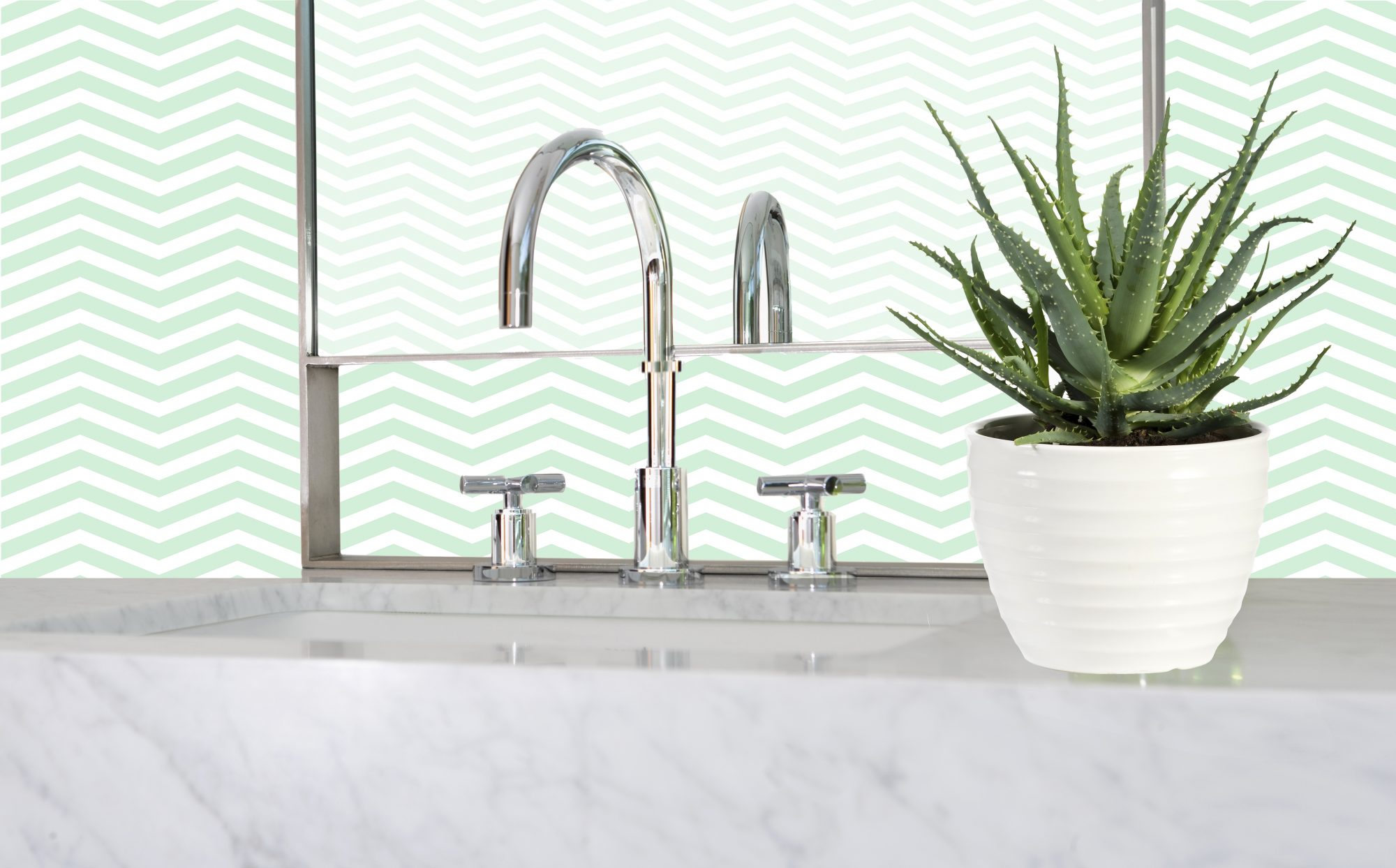Best Plants for the Bathroom, aloe plant in bathroom