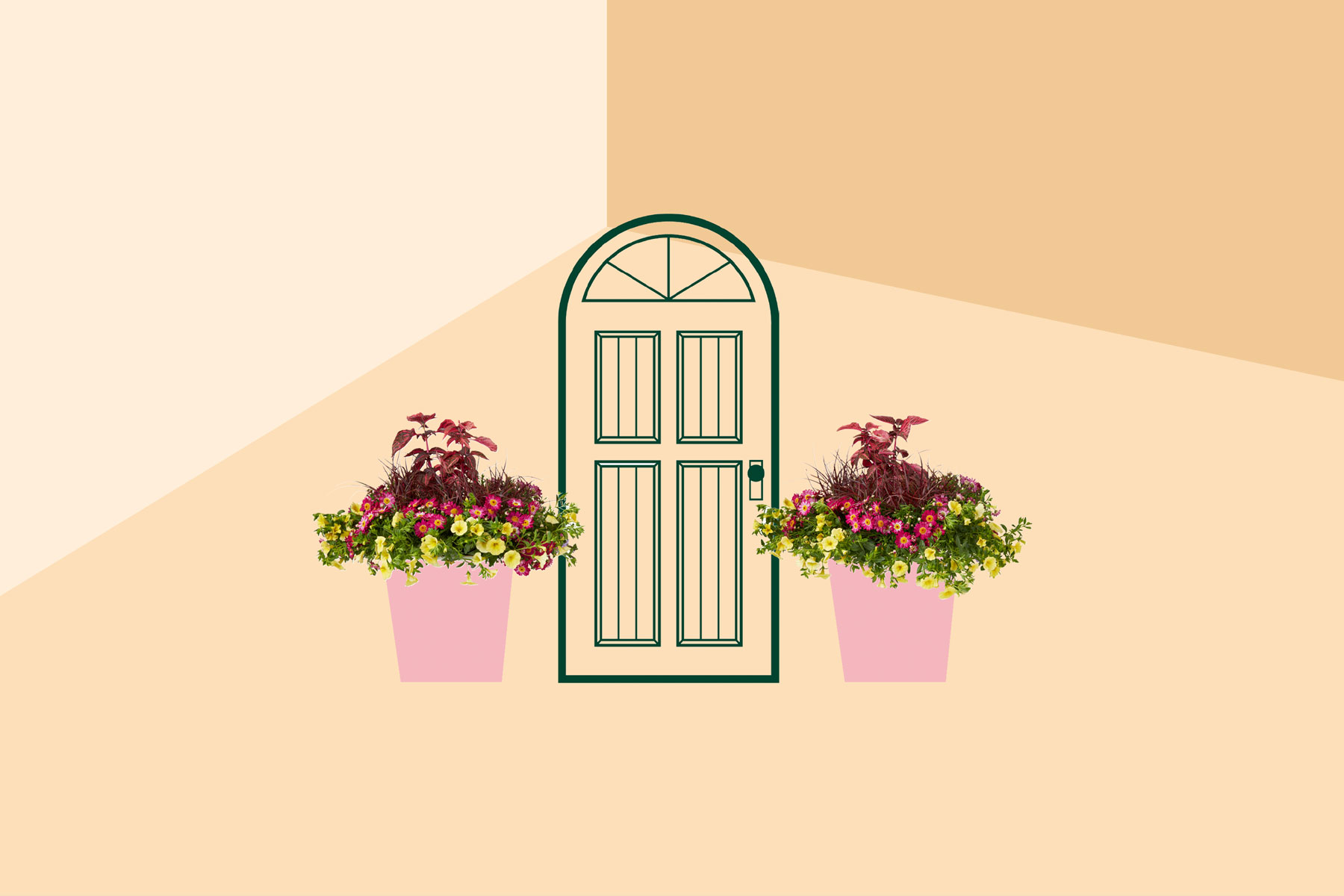 Knock! Knock! front door plants service