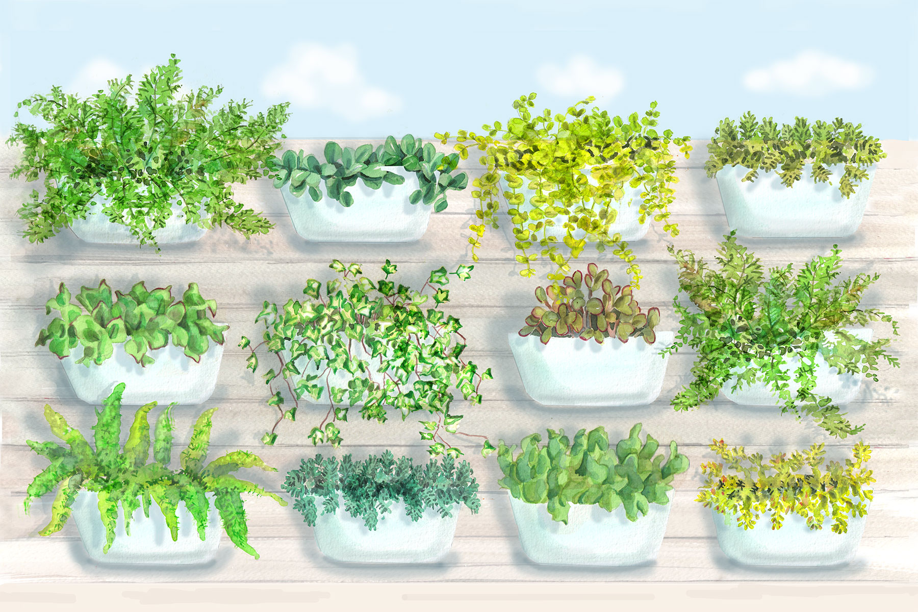 167 & 4 Container Garden Ideas That Are Fail-Proof   Real Simple