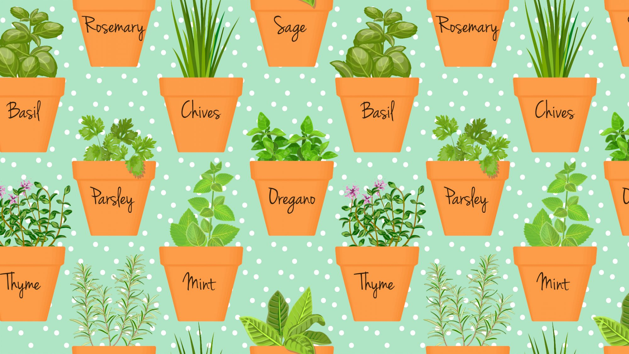 The Biggest Mistakes You're Making With Your Indoor Herb Garden