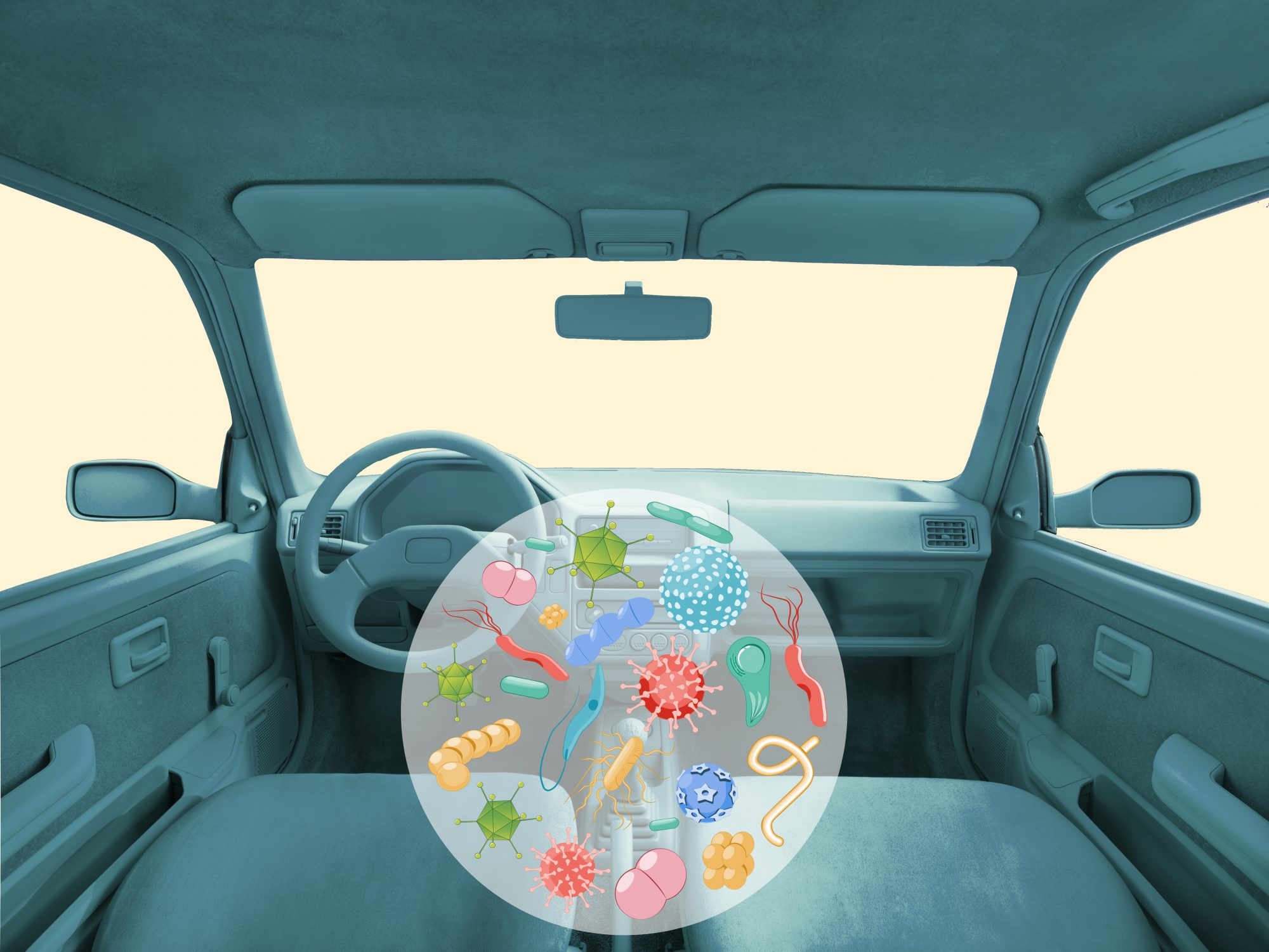 This Is the Germiest Spot in Your Car (And It's Surprisingly Not the Steering Wheel)