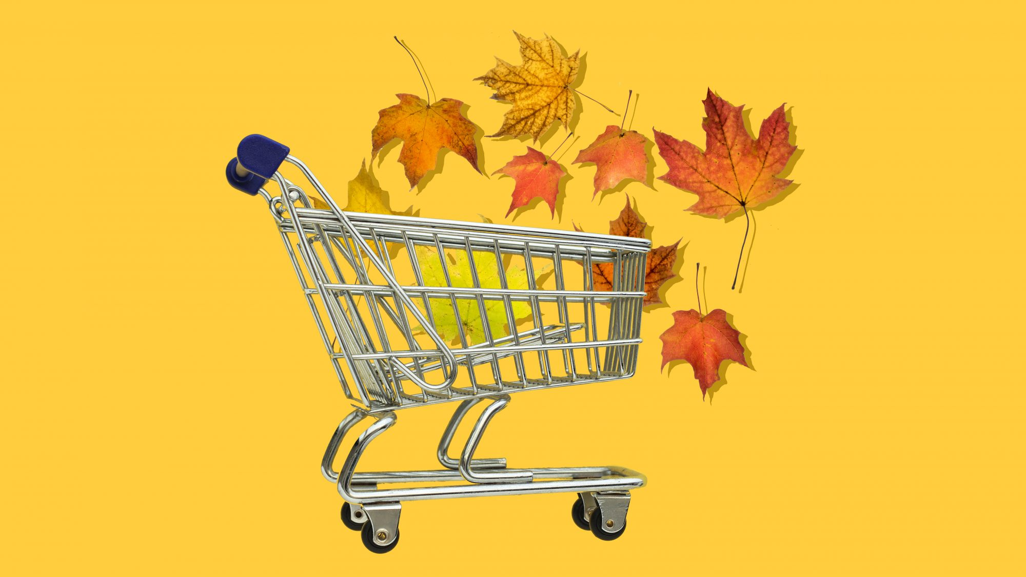 Best Time of Year to Buy Appliances, leaves in shopping cart