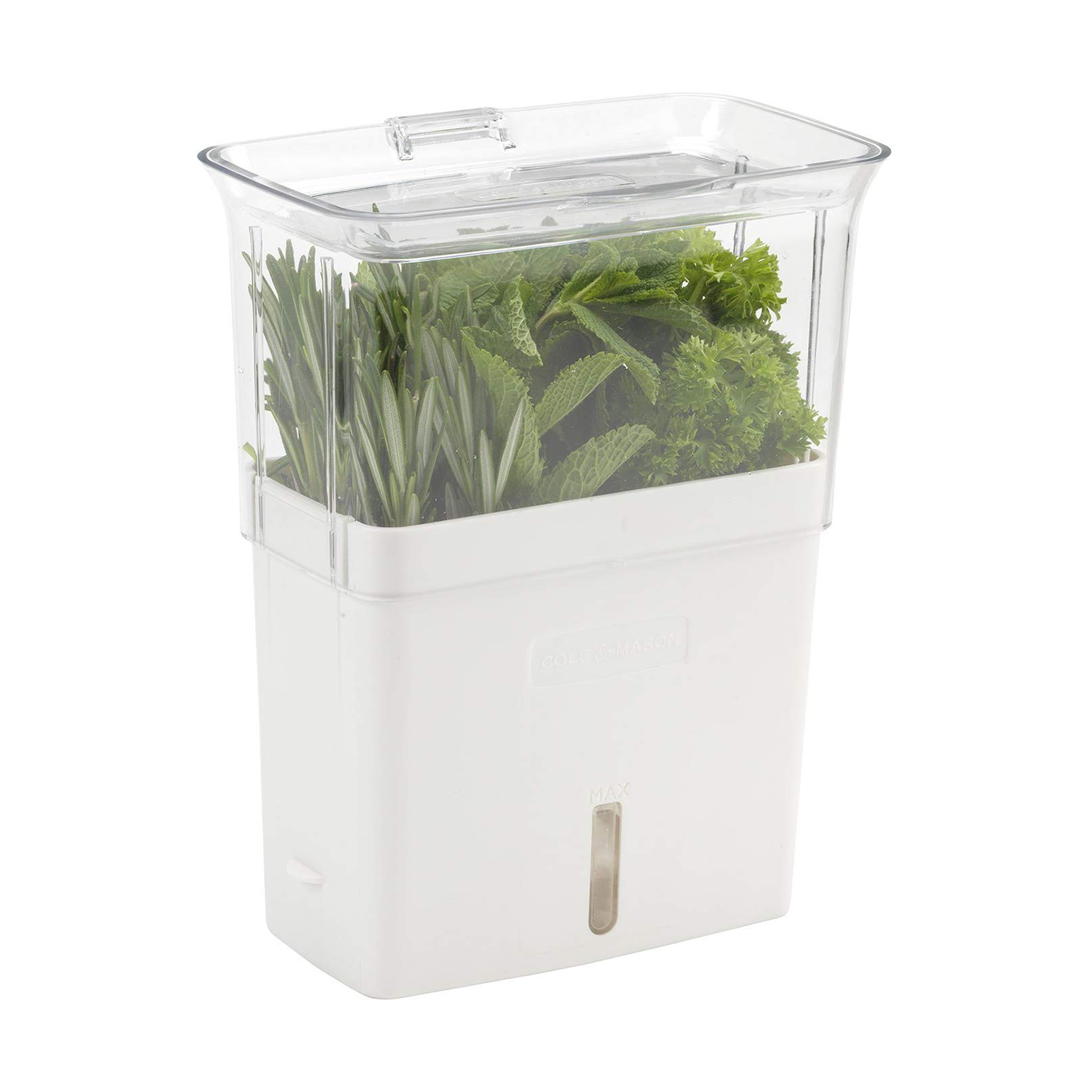 COLE & MASON Fresh Herb Keeper, Container