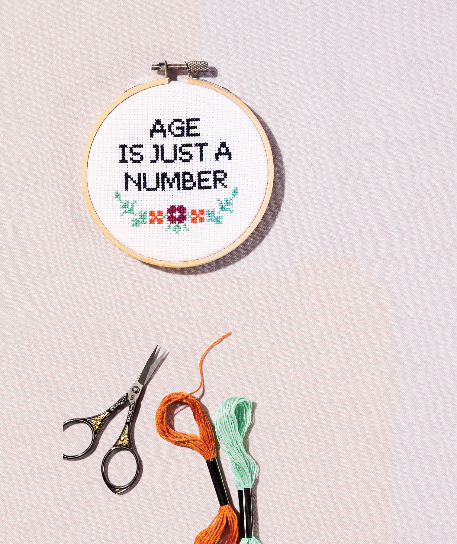 Age is Just a Number cross-stitch