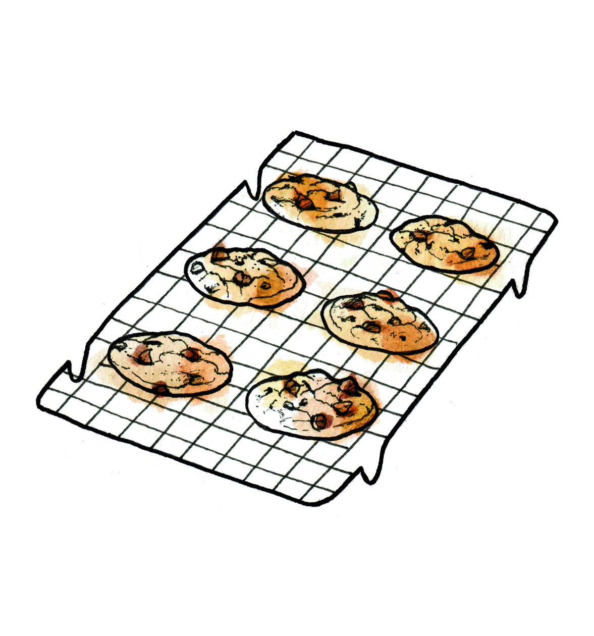 Illustration: cookies on cooling rack