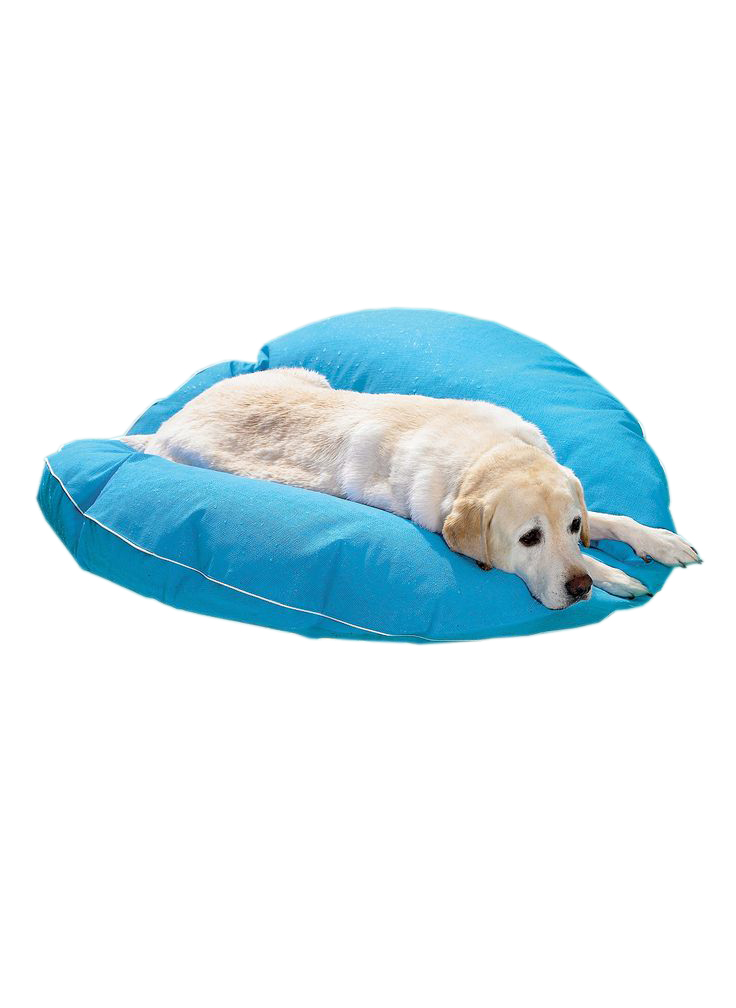 dog-pool-float-lounger