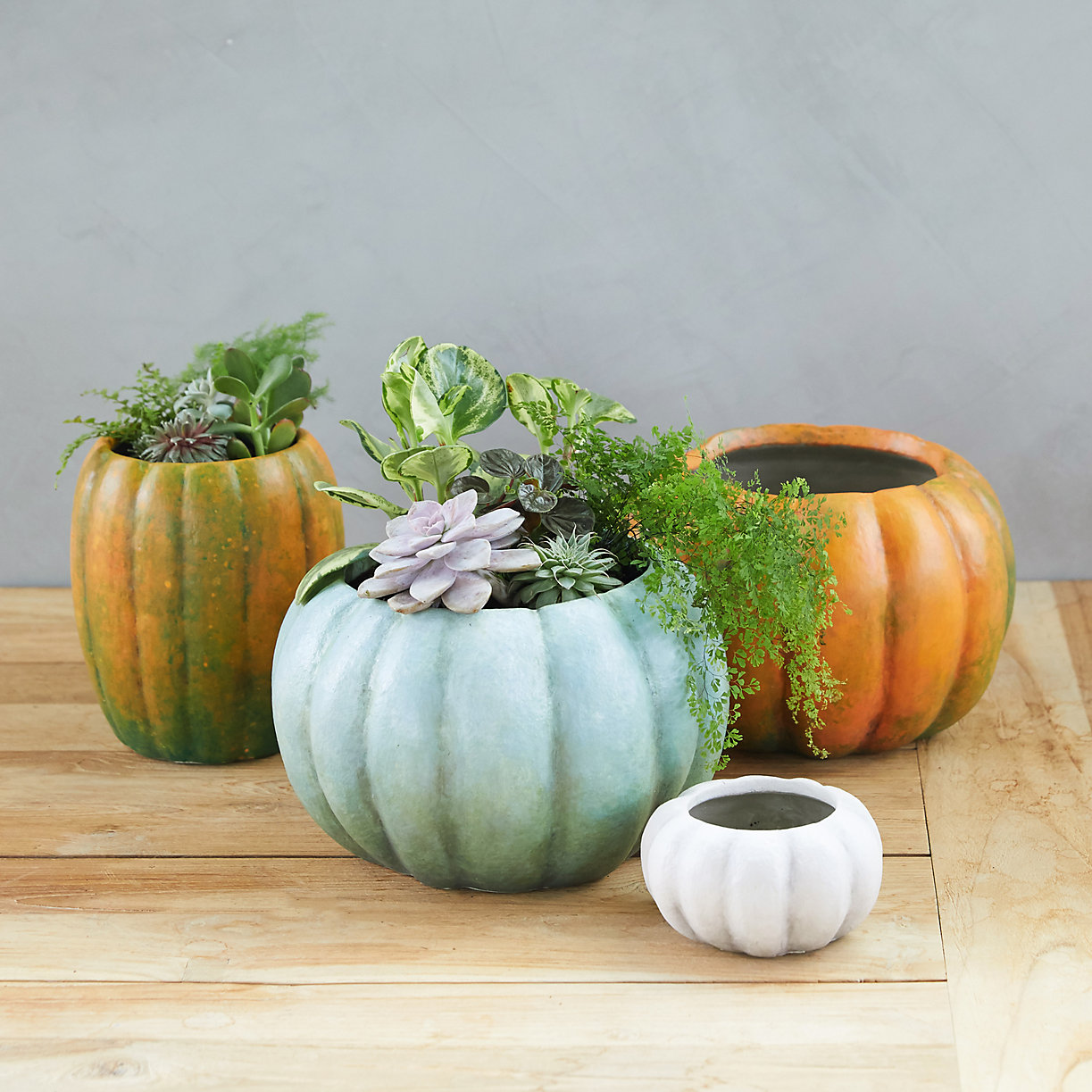 Pumpkin shaped planters