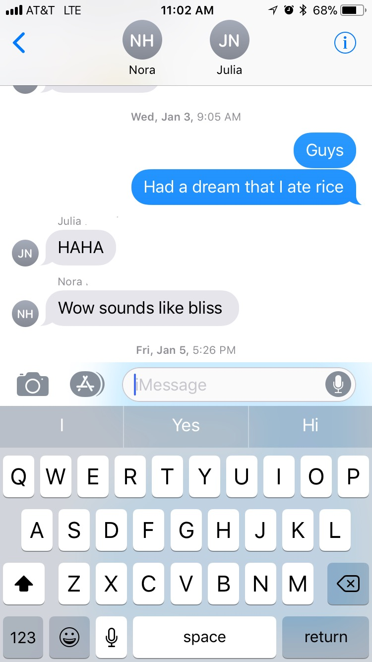 Rice Dream Text