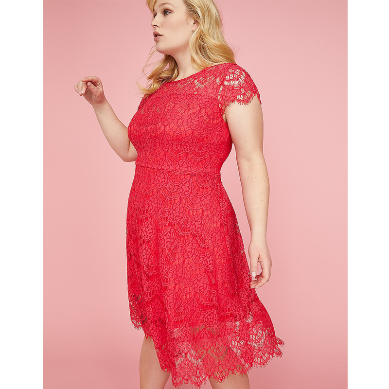 Lane Bryant Back Cutout Lace Fit and Flare Dress